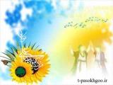 آیا شرط ورود به بهشت ولایت امام علی علیه السلام است؟